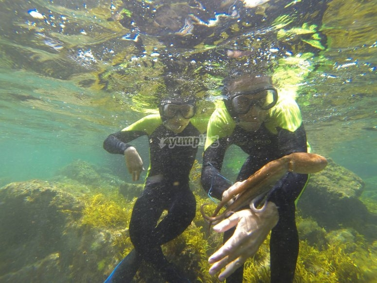 Noja-Oct-八达通 - 享受浮潜一天