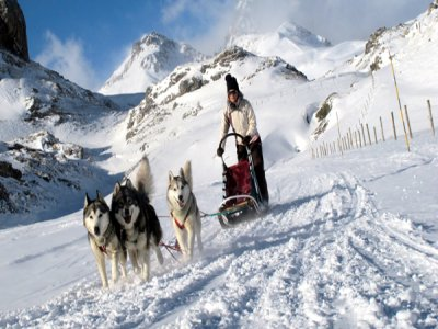 Tena Park Mushing