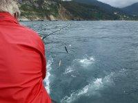 Capturando peces