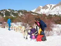 Mushing en familia