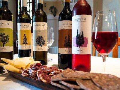 Penedés的葡萄栽培,酿酒和品尝,3小时
