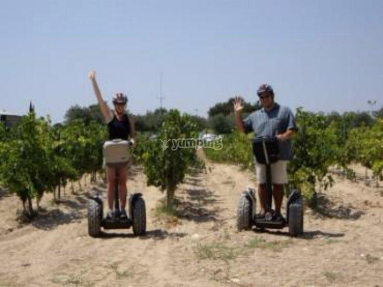 Segway por las vinas