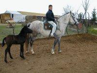 chico montando a caballo en ibiza