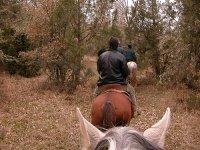paseo a caballo en el campo