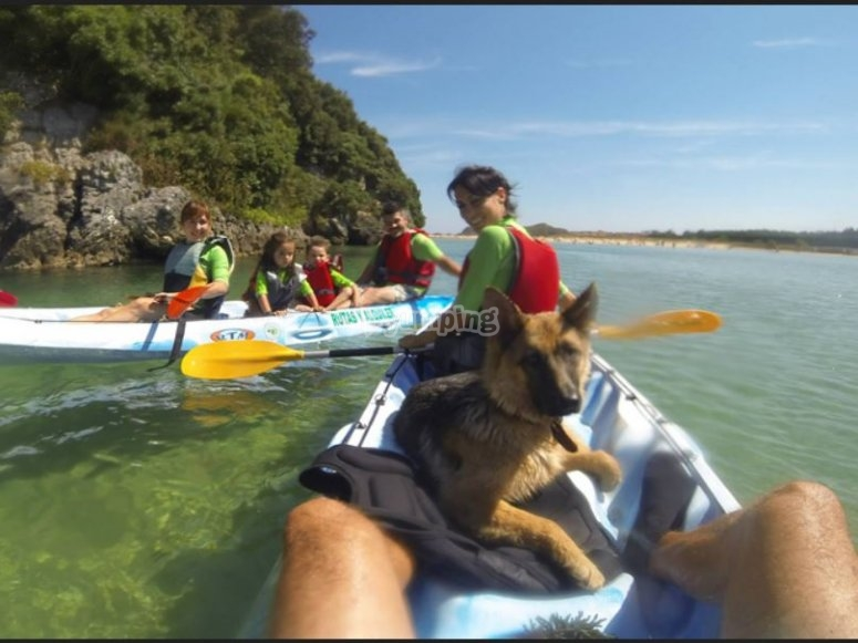 Con los kayaks y el perro