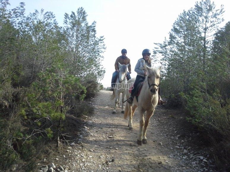 Día de ruta a caballo