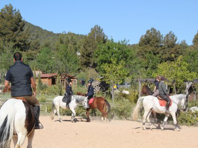Horse-riding route in Alicante, 90 minutes