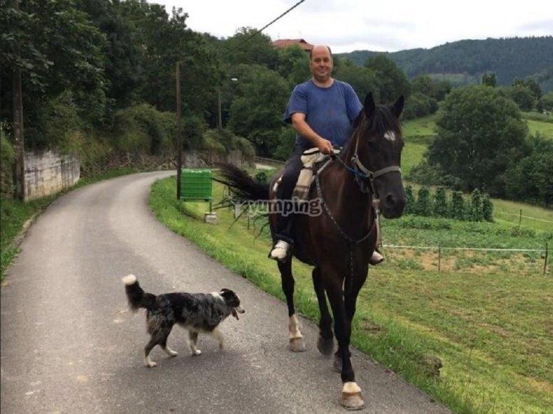 与狗一起骑马