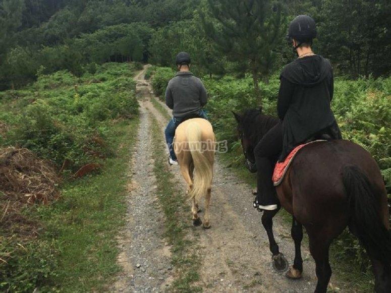 Presa a cavallo