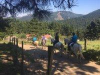 Equitazione nella natura