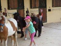 children taking care of the horses