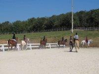几个男孩骑着马,而教练给他们上课 - 在马中心的室外班