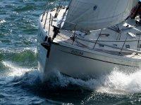 Oreus en la regata