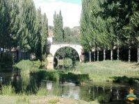 Puente en el Rio Tajo (Verano)