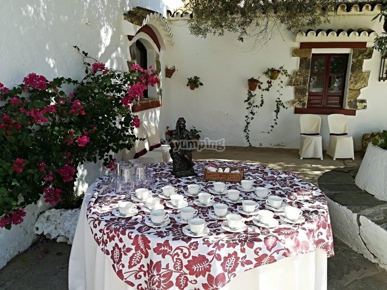 Café bajo el olivo centenario