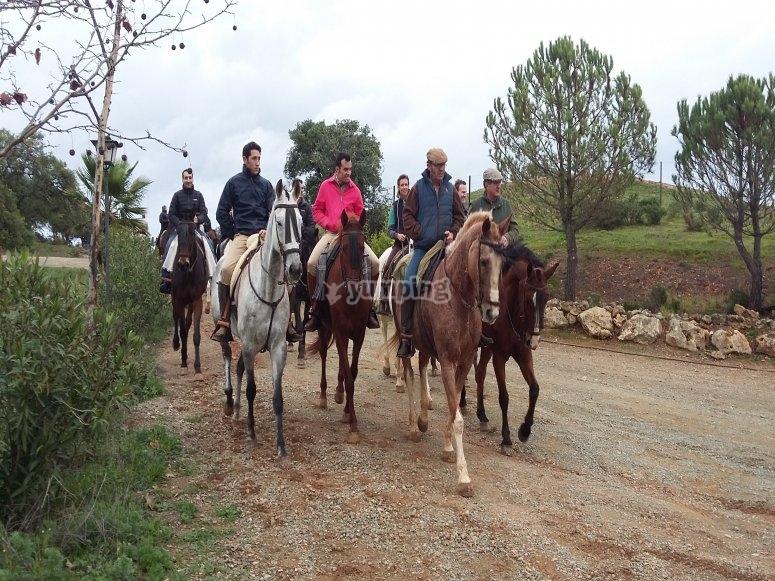 Paseo a caballo por la ganadería