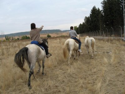 Horse-riding route in Guadalajara, 4 days