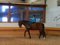 A caballo en nuestras instalaciones