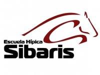 Escuela Hípica Sibaris Campamentos Hípicos