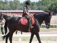 享受一天的骑马训练营