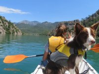 Paddling in the company of the dog