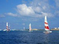 福门特拉岛双体帆船包机机队