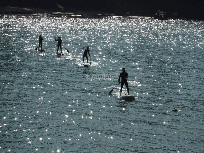 Paddle surfing in the coast