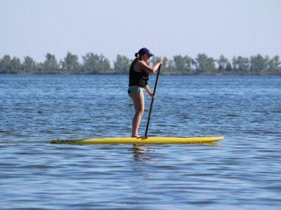 划桨冲浪设备租赁1小时ria de Foz