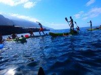 日皮艇海和乐趣