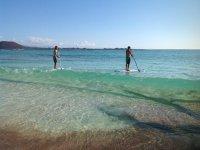 Alquiler de material paddle surf en Corralejo 1h