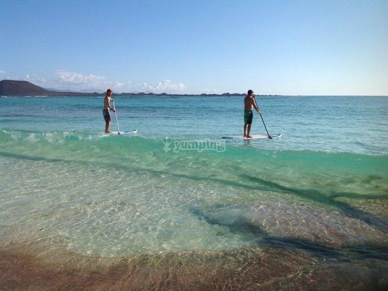Paddle surf in Corralejo