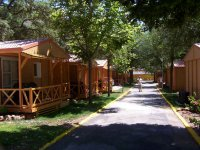 Camps with accommodation in bungalows