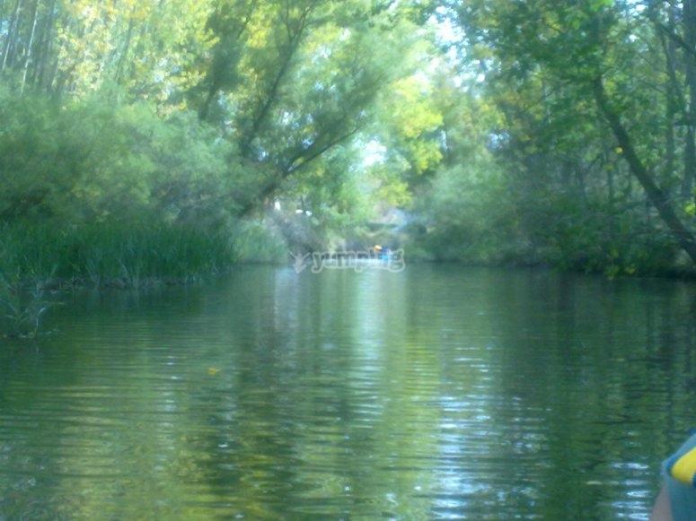 杜拉顿河畔切斯