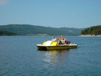 家庭踏板船