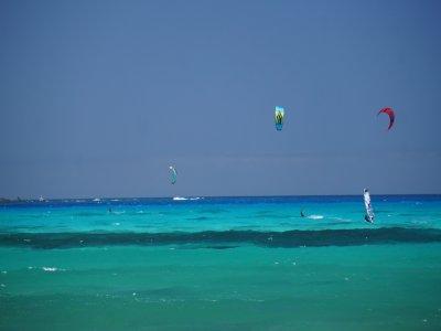富埃特文图拉的风筝冲浪营地4晚
