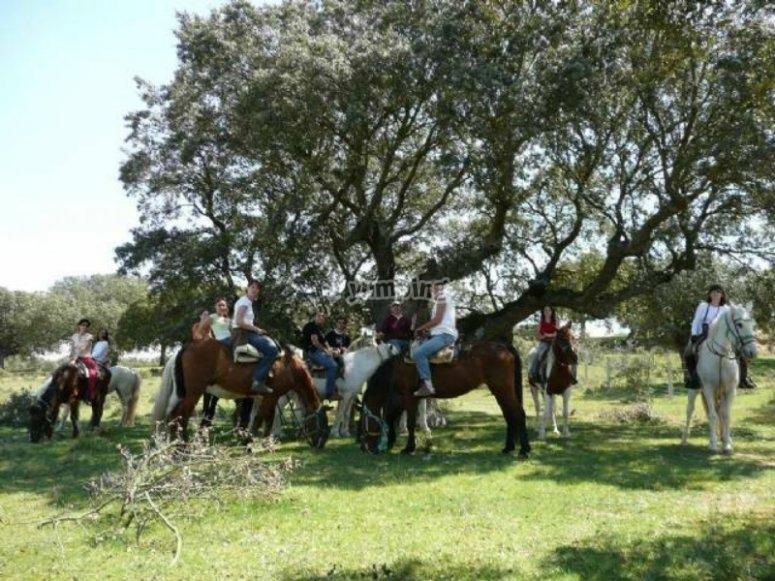 在家庭中骑马的路线