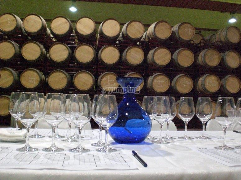 Cata de vinos en Curiel del Duero