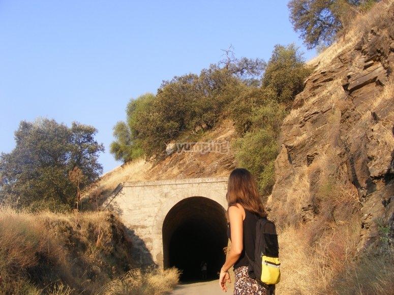 Antiguos Túneles en Distrito Minero