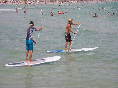 Excursión paddle surf por Playa de Muro 1h 30min