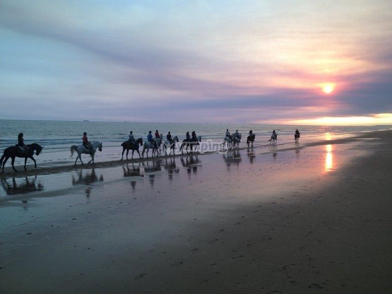 Paseo a caballo por la playa en playa de Huelva