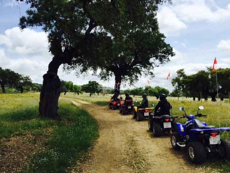 Quad bike tour in Monesterio