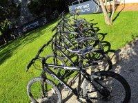 Exhibición de las bici