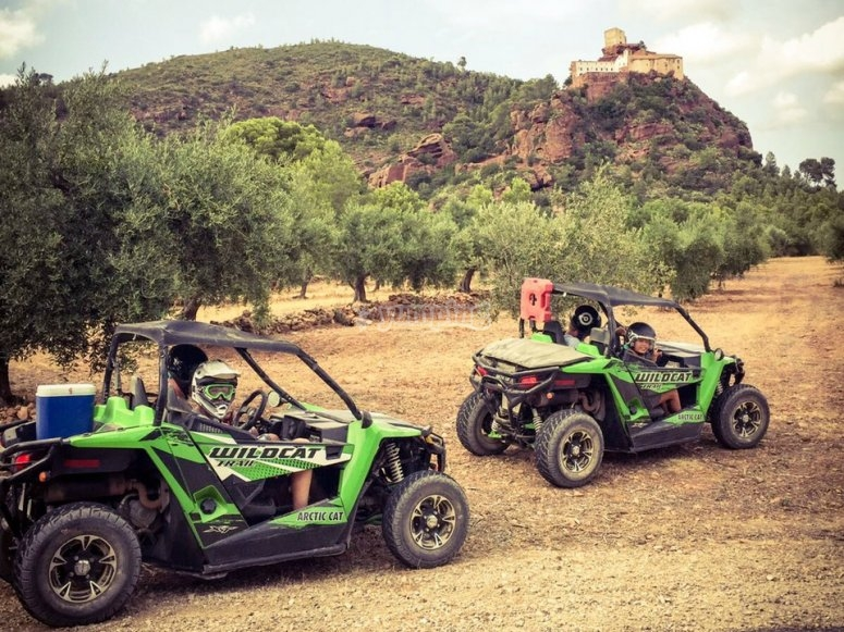 Two-person dune buggy tour of Salou, 2hrs - Deals in en