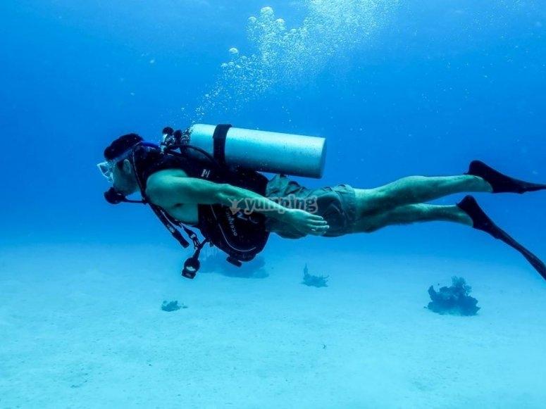 在清澈的水中潜水