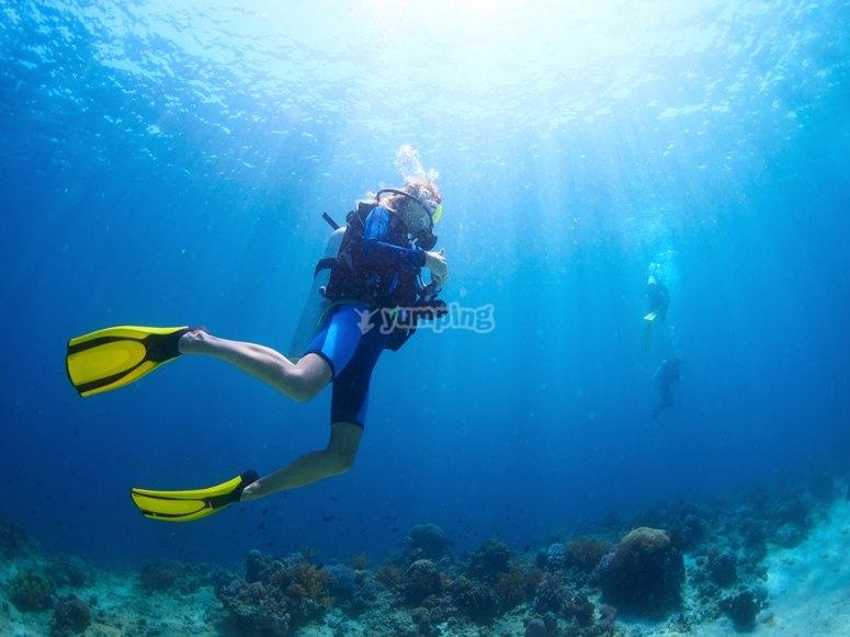 在帕尔马潜水