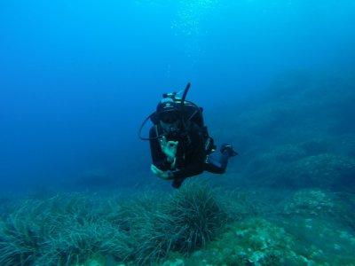 Bautismo de Buceo en la Bahía de Palma, 3 o 4 hs.