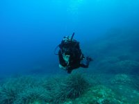 潜水员悬浮在水中