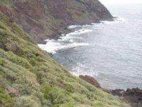 野生雏菊在火山口沿岸徒步旅行徒步旅行
