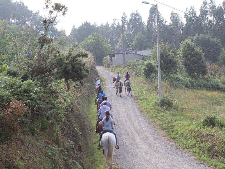 disfruta de las mejores rutas a caballo.