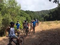 Excursión en bici con amigos